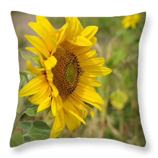 Sunflower Show Off Throw Pillow by Linda Mishler