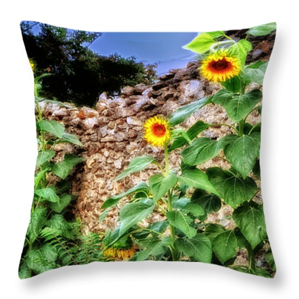 Sunflower Wall Throw Pillow by Bill Cannon