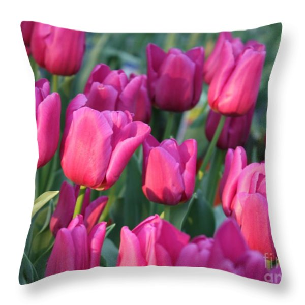 Sunlight on Pink Tulips Throw Pillow by Carol Groenen