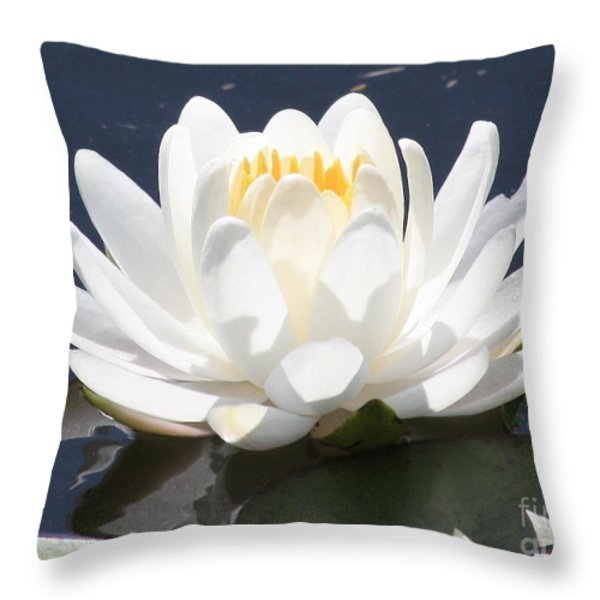 Sunlight on Water Lily Throw Pillow by Carol Groenen