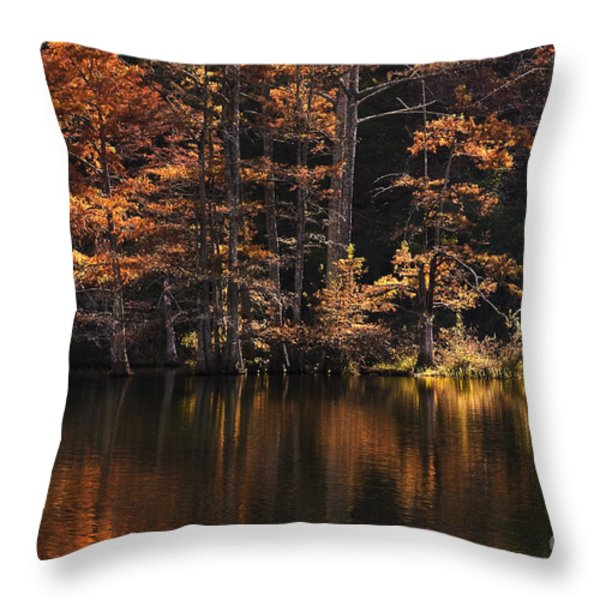 Sunlit Glow Throw Pillow by Tamyra Ayles