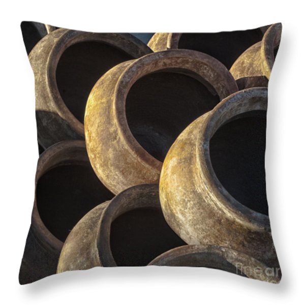 Sunlit Pottery Throw Pillow by Sandra Bronstein