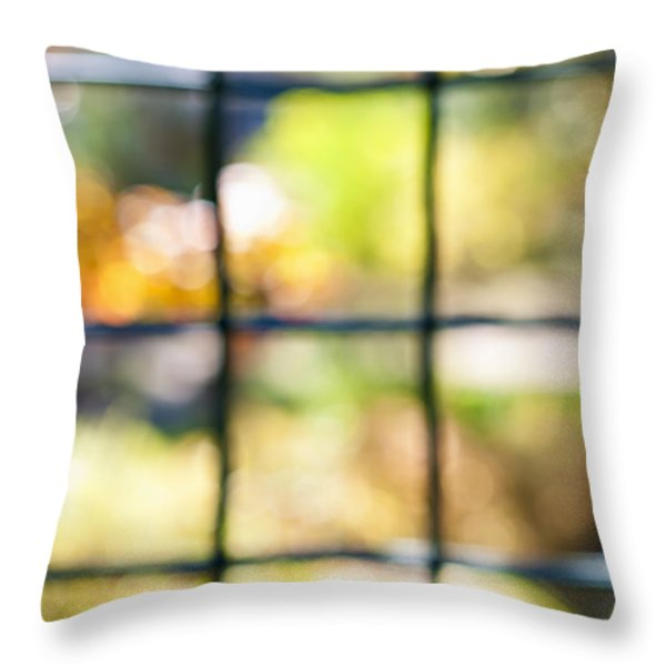 Sunny outside Throw Pillow by Elena Elisseeva