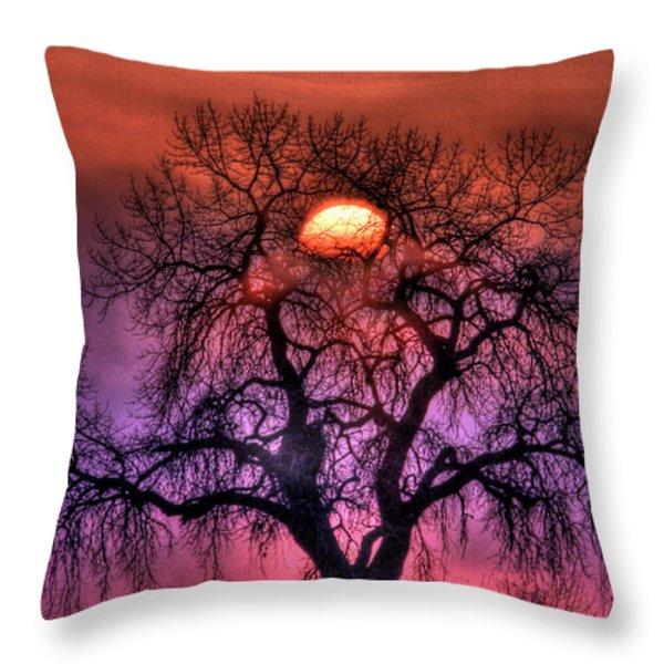 Sunrise Through The Foggy Tree Throw Pillow by Scott Mahon