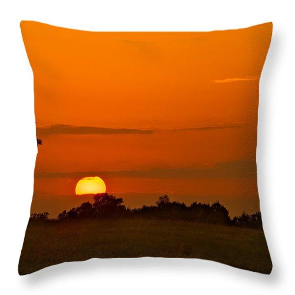 Sunset Over Horicon Marsh Throw Pillow by Steve Gadomski