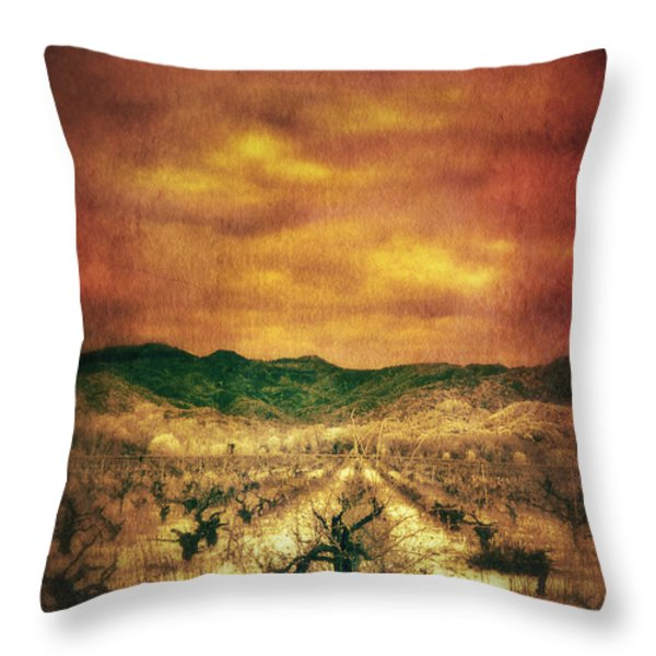 Sunset Over Vineyard Throw Pillow by Jill Battaglia