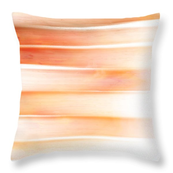 Throw Pillow featuring the painting Sunset Sea, Reflection by Frank Tschakert