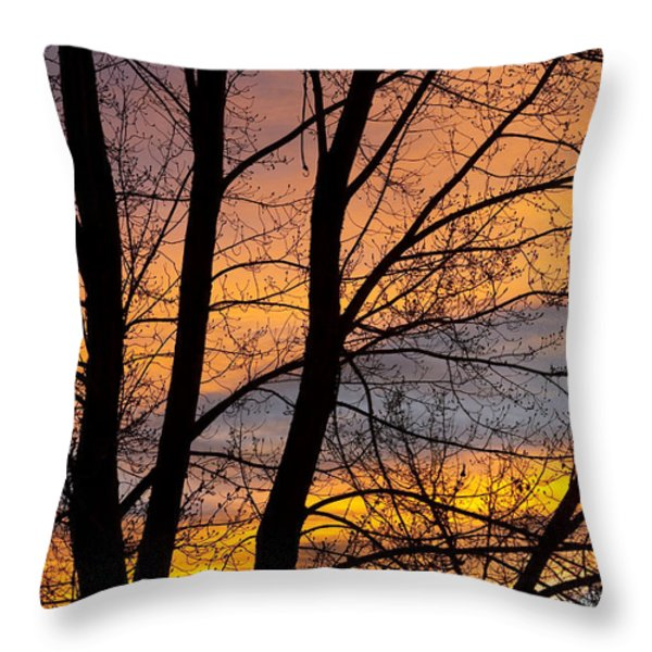 Sunset Through The Tree Silhouette Throw Pillow by James BO  Insogna