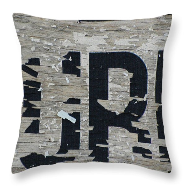 Surf Throw Pillow by Anahi DeCanio