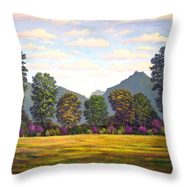 Sutter Buttes In Springtime Throw Pillow by Frank Wilson