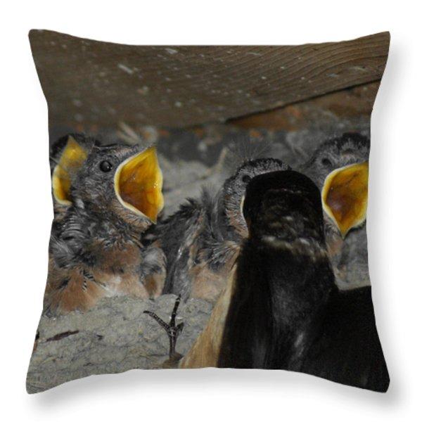 Swallows Opera  Throw Pillow by Ernie Echols