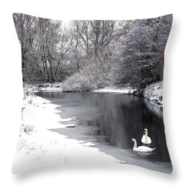 Swans In The Snow Throw Pillow by Gary Eason