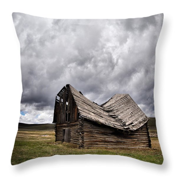 Sway Back Throw Pillow by Leland D Howard
