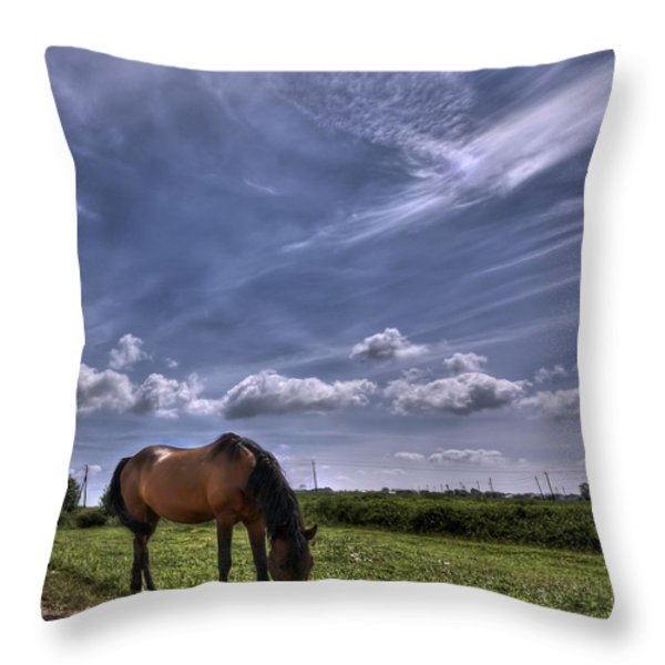 Sweet Country Scents Throw Pillow by Evelina Kremsdorf