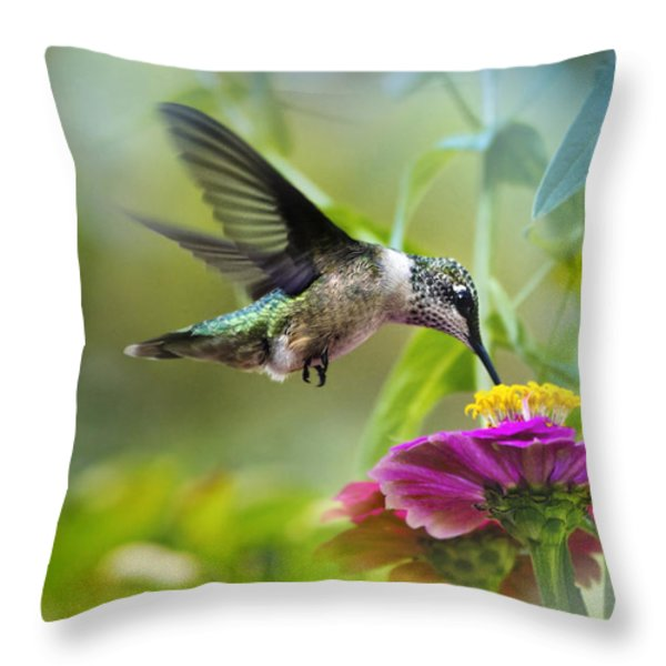 Sweet Success Throw Pillow by Christina Rollo