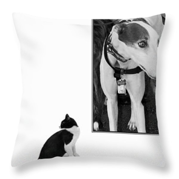 Sworn Enemies - Gently Cross Your Eyes And Focus On The Middle Image Throw Pillow by Brian Wallace