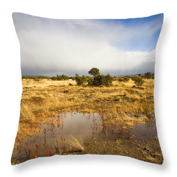Tasmanian Storm  Throw Pillow by Mike  Dawson