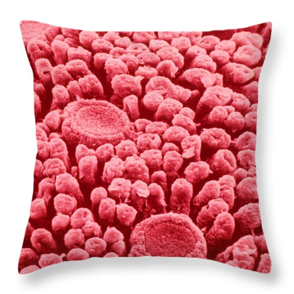 Taste Buds, Sem Throw Pillow by Omikron