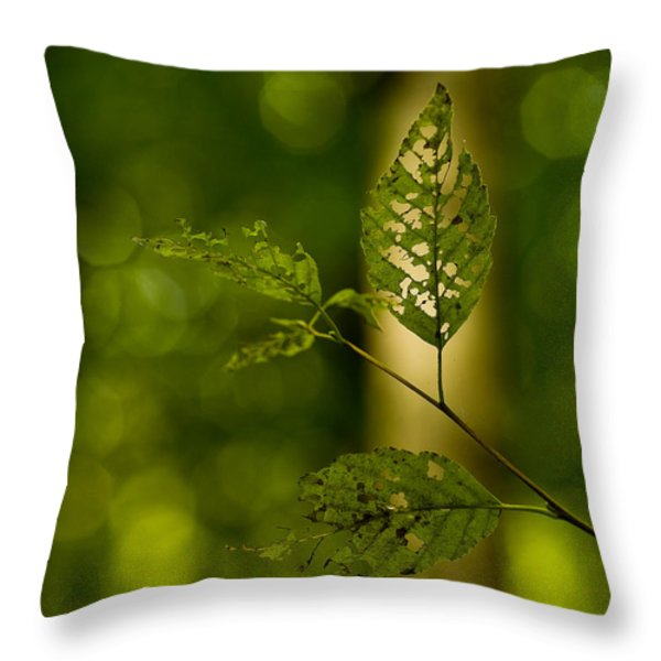 Tattered Leaves Throw Pillow by Mike Reid