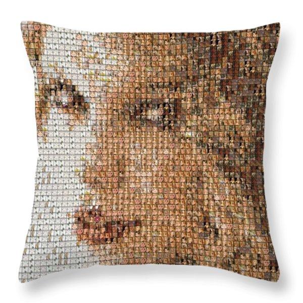 Taylor Swift Mosaic Throw Pillow by Paul Van Scott