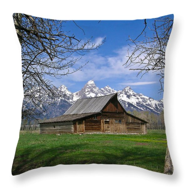 Teton Barn Throw Pillow by Douglas Barnett