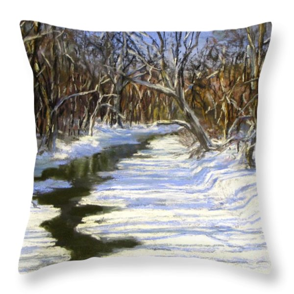 The Assabet River in winter Throw Pillow by Jack Skinner