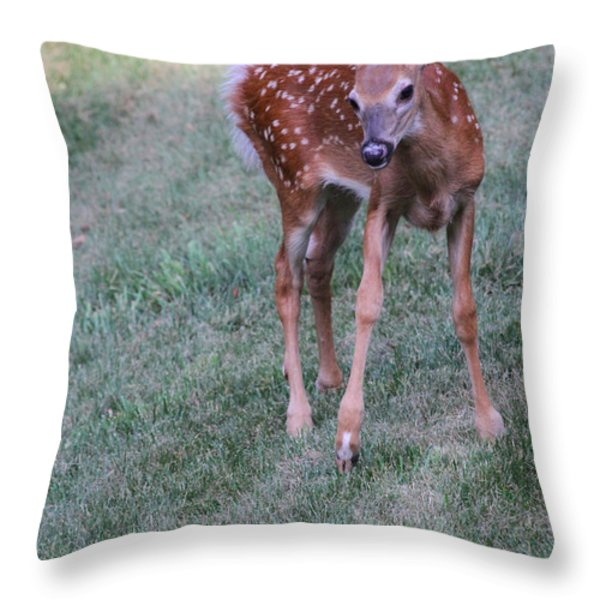 The Bambi Stance Throw Pillow by Karol  Livote