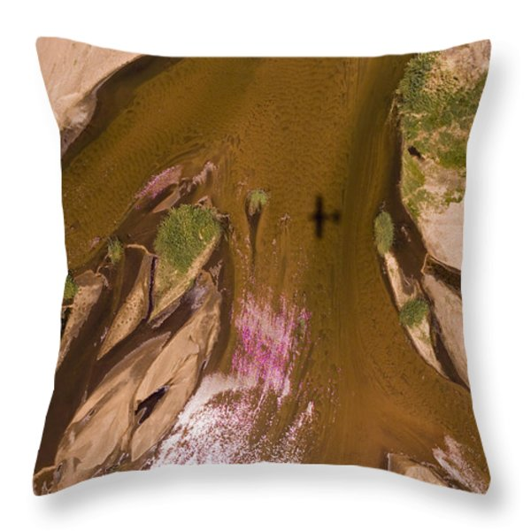 The Braided River Rovuma In The Dry Throw Pillow by Michael Fay