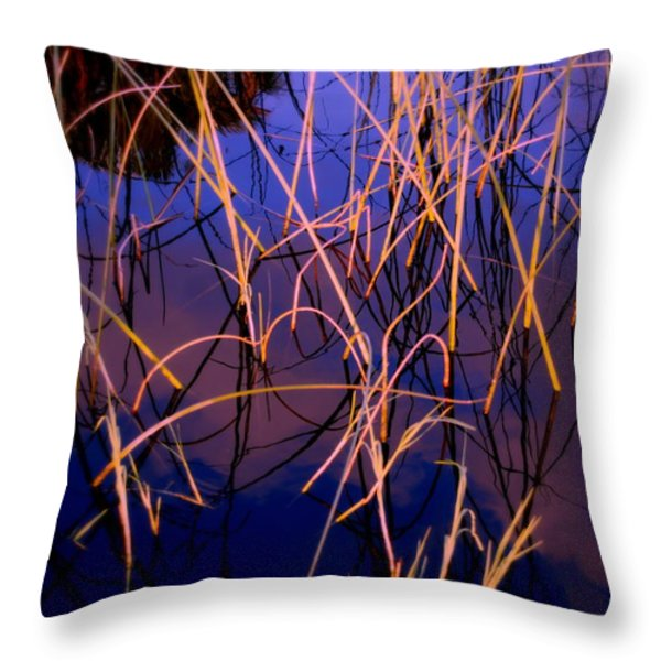 The Center Throw Pillow by Susanne Van Hulst
