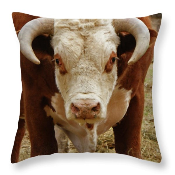 The Challenge Throw Pillow by Ernie Echols