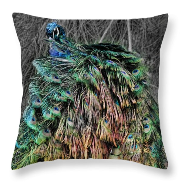 The Emperors Clothes Throw Pillow by Douglas Barnard