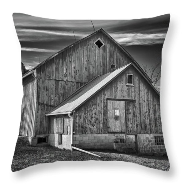 The Fargo Project 12232b Throw Pillow by Guy Whiteley