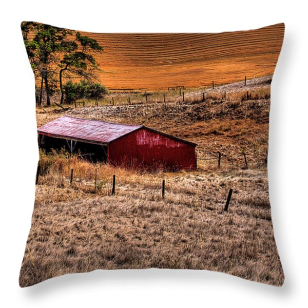The Farm Throw Pillow by David Patterson