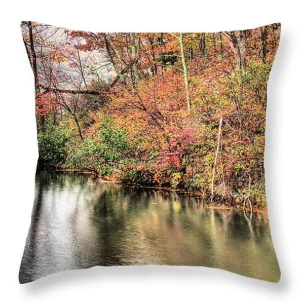 The Fishing Spot Throw Pillow by JC Findley