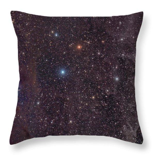 The Iris Nebula In Cepheus Throw Pillow by John Davis