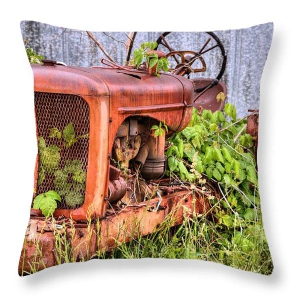 The Ivy League Throw Pillow by JC Findley
