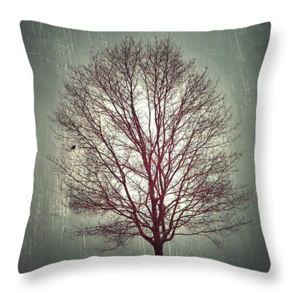 The Light Within Throw Pillow by Tara Turner