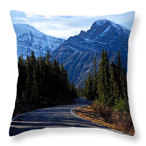 The Long and Winding Road Throw Pillow by Larry Ricker