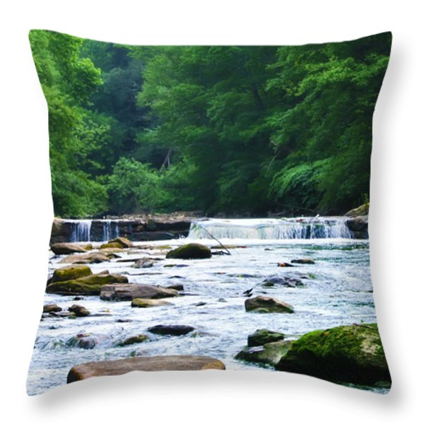 The Mighty Wissahickon Throw Pillow by Bill Cannon