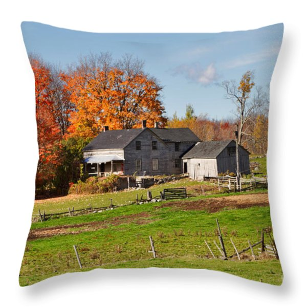 The Old Farm in Autumn Throw Pillow by Louise Heusinkveld