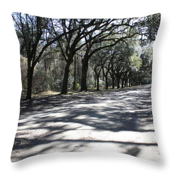 The Road Home Throw Pillow by Carol Groenen