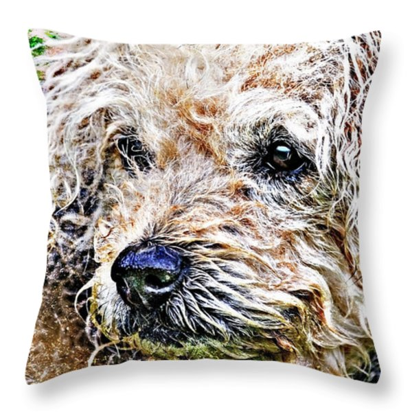 the scruffiest dog in the world Throw Pillow by Meirion Matthias