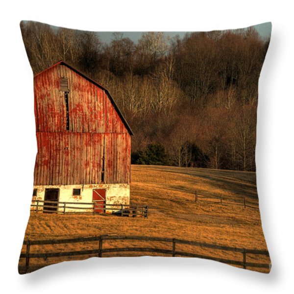 The Simple Life Throw Pillow by Lois Bryan