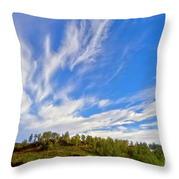 The Skies Throw Pillow by Heiko Koehrer-Wagner