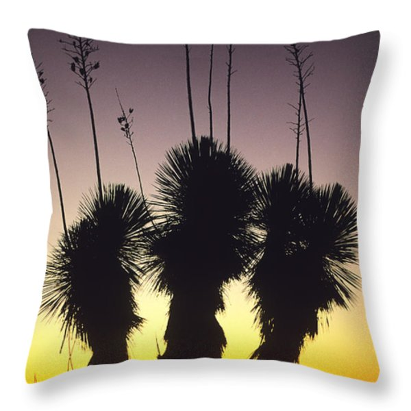 The Sun Sets Behind A Stand Of Yucca Throw Pillow by Bill Hatcher