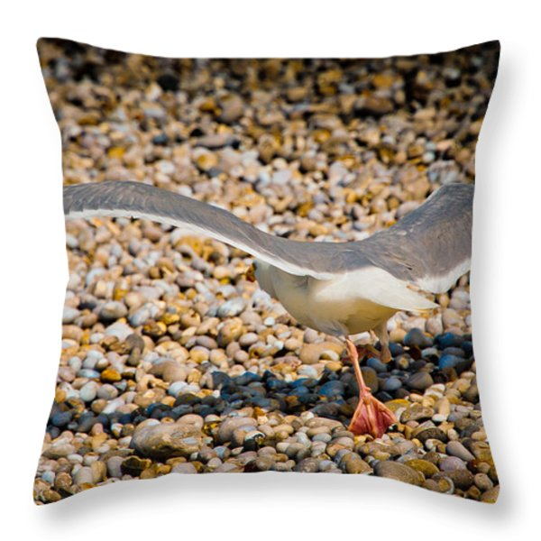 The Takeoff Throw Pillow by Loriental Photography