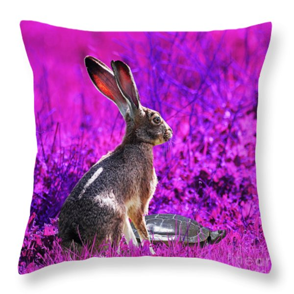 The Tortoise and the Hare . Magenta Square Throw Pillow by Wingsdomain Art and Photography