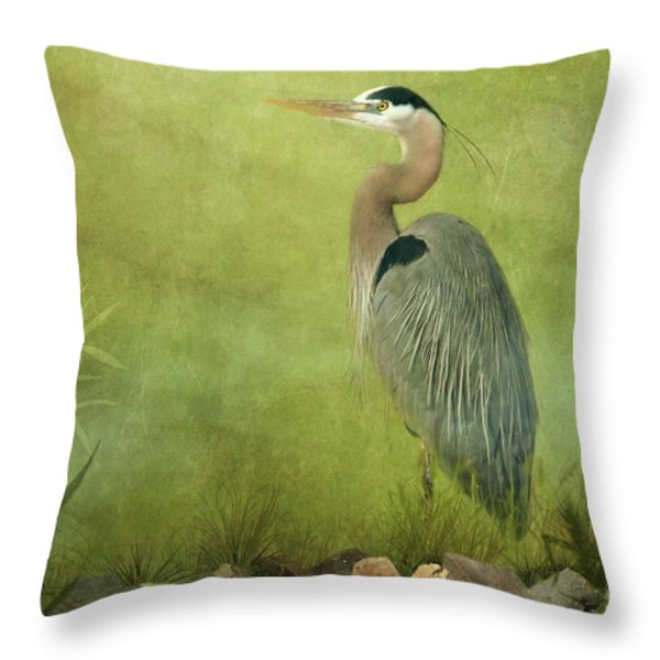 The Wait Throw Pillow by Reflective Moment Photography And Digital Art Images