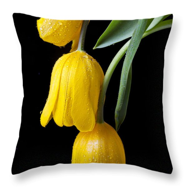 Three Drooping Tulips Throw Pillow by Garry Gay