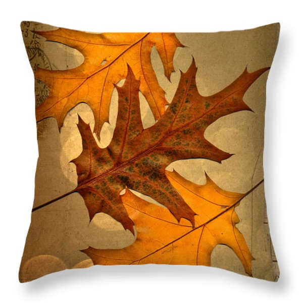Three Throw Pillow by Jan Bickerton